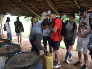 Visite de centre technique, expérimentation de techniques innovantes accessibles aux paysans: l'usage des purins bio pesticides et fertilisants à base de consoude, piment, tanaisie et absinthe sur les cultures maraichères