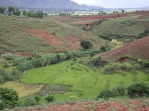 Moyen ouest, riziere des bas fond cultures sur versants
