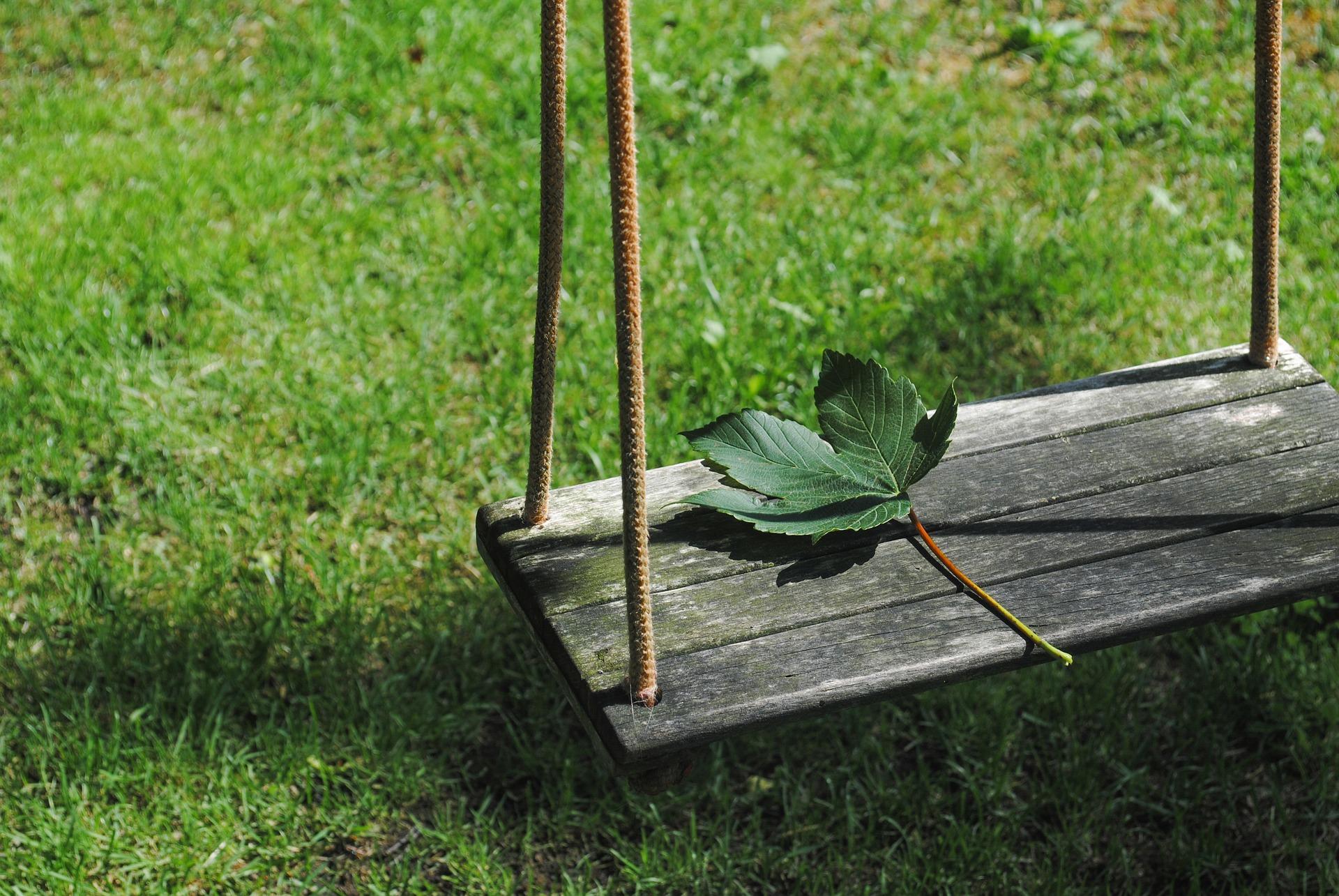 leaf-2471187_1920